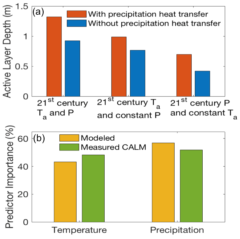 Two color-coded graphs. (A) on Active Layer Depth and precipitation heat transfer. (B) Predicator Importance (%) with temperature and precipitation.