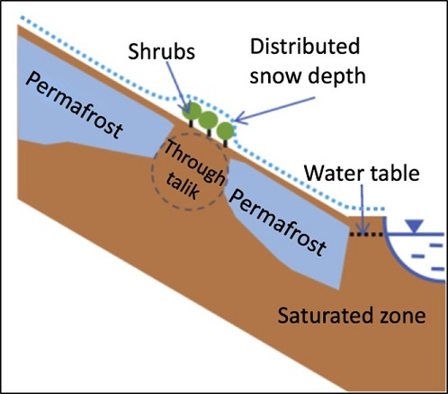 Schematic of modeling transect.