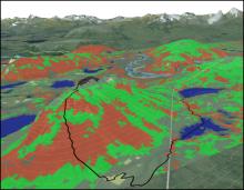 Depiction of vegetation community type computing.